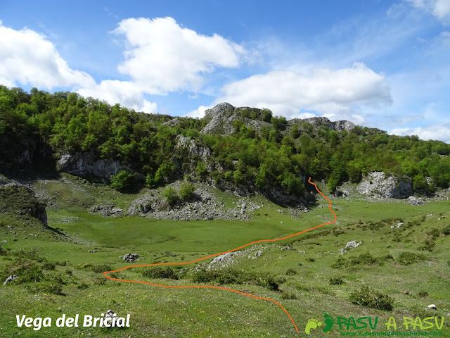 Ruta al Cantu Ceñal: Vega del Bricial
