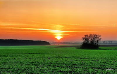 Wake Up Early! Boost Productivity & Improve Health: Watch The Beauty of Early Rising
