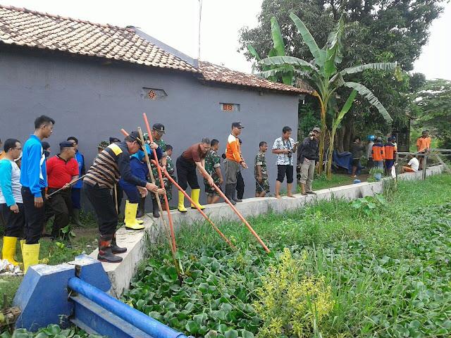 Tiga Pilar Pekalongan dan Masyarakat Bahu Membahu Bersihkan Enceng Gondok