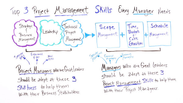 Why you need project management skills