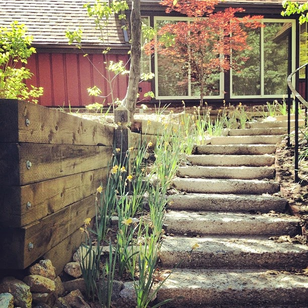 steps line with flowers