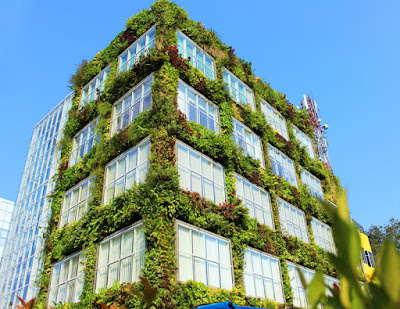 Vertical Garden Jakarta Terpercaya Solusi Untuk Lahan Terbatas