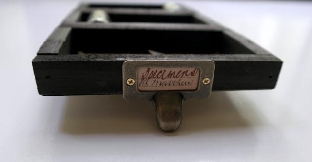 Metal Drawer Pull on DIY Speciment Tray by Dana Tatar