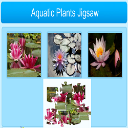 Aquatic Plants Jigsaw Puzzle Game