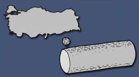 Turkey illustration