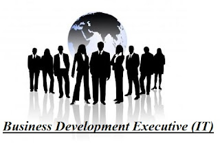 Business Development Executive (IT)