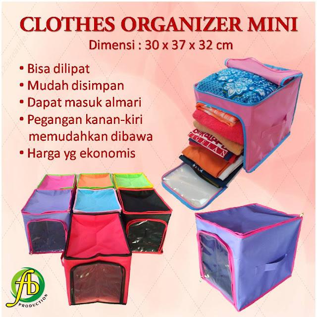 Cloth Storage Organizer