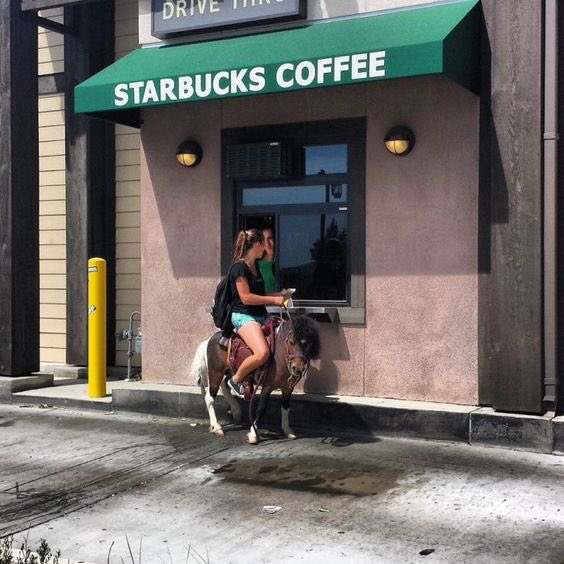 Girl on Starbucks coffee with her pet