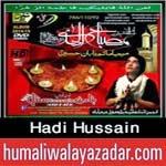 http://audionohay.blogspot.com/2014/10/hadi-hussain-nohay-2015.html