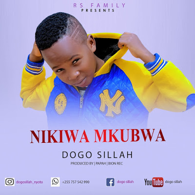 Download Audio/Video | Dogo Sila - Nikiwa mkubwa