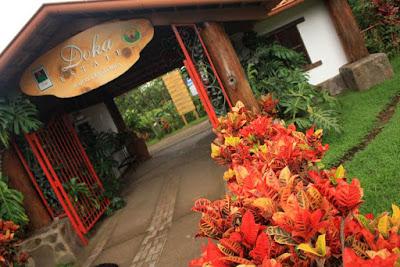 Plantacion de cafe Doka Estate