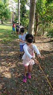 我們在森林裡遊玩