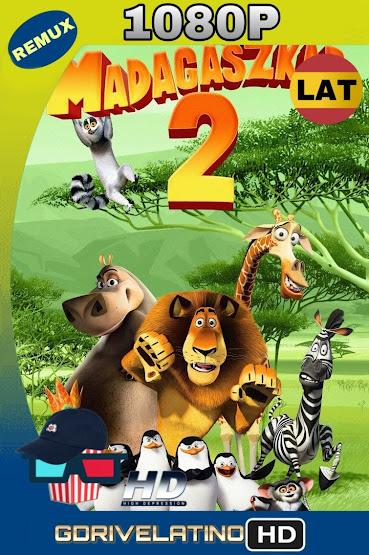 Madagascar 2 (2008) BDRmux 1080p Latino-Ingles MKV