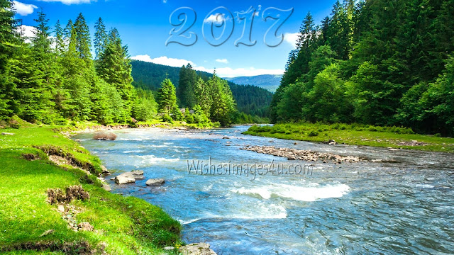 New Year 2017 Nature Images download for desktop