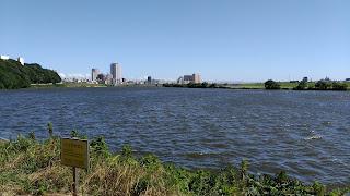 里見公園から江戸川を見る