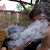 Marijuana tidak menyebabkan kanker paru-paru atau mengganggu fungsi paru-paru