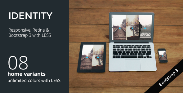 Free Download IDENTITY Responsive Multi-Purpose Portfolio Wordpress Theme