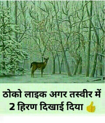 Picture Riddles For Whatsapp With Answers