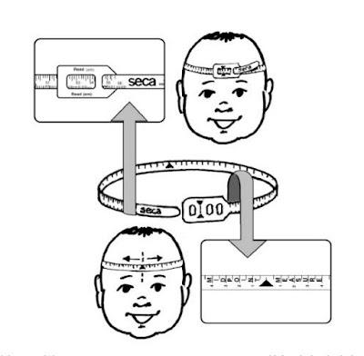 instrucciones de la cinta seca 203 para medida de perimetro craneal
