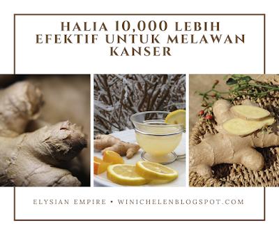 HALIA 10,000 KALI LEBIH EFEKTIF UNTUK MELAWAN KANSER   WINICHELEN