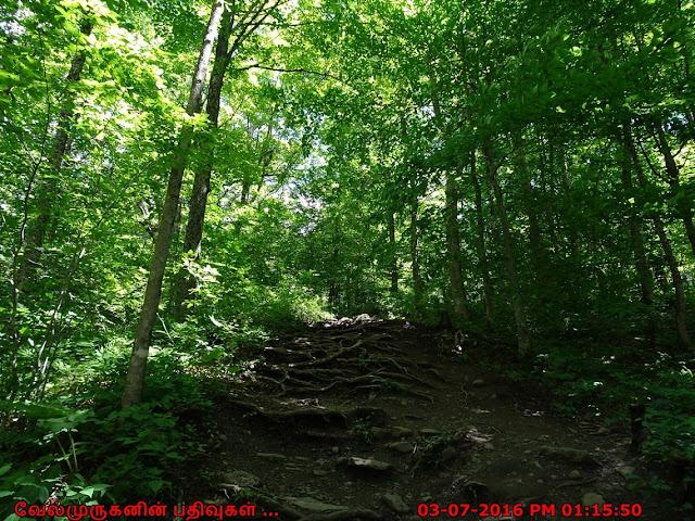 Pixley Falls Nature Trail