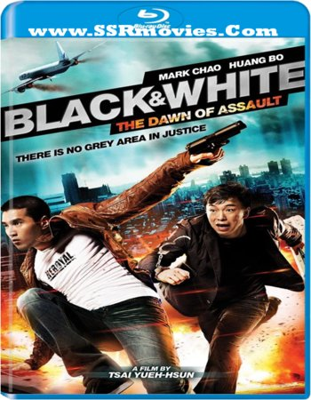Black & White - The Dawn of Assault (2012) dual audio 480p
