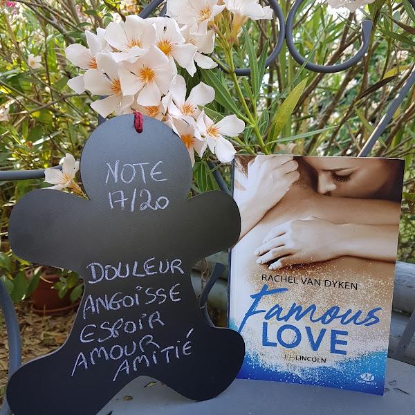 Famous Love, tome 1 : Lincoln de Rachel Van Dyken