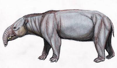 mamiferos del oligoceno Astrapotherium