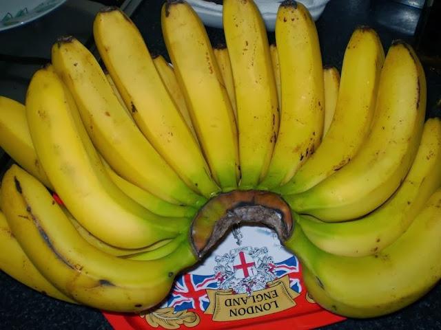 Receita de pudim de banana com cobertura de chocolate