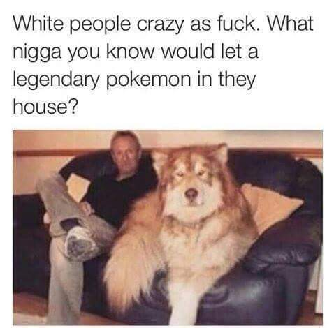 man lets legendary Pokemon into home