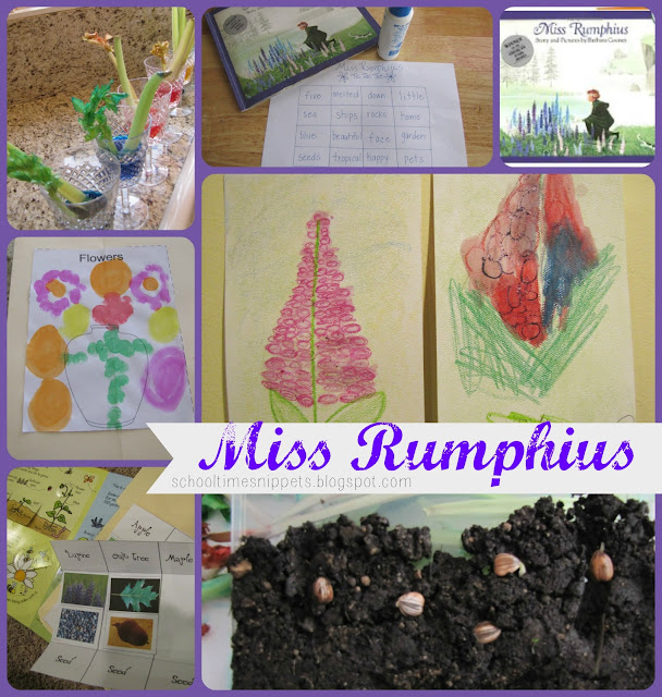 Miss Rumphius Activities