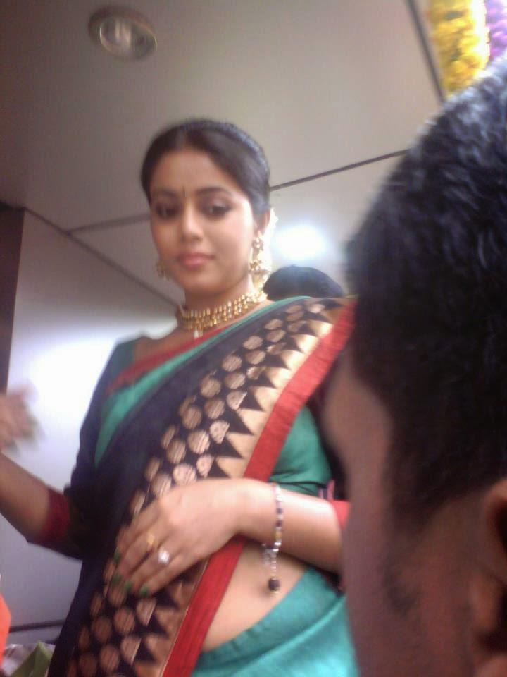 Shamna Kasim Hot Side View Pics In Saree  Indian Cinema -1497