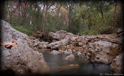 Barati Raw a water fall in corbett