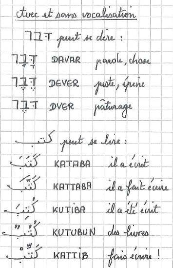 Curieuse tourterelle for Portent en arabe
