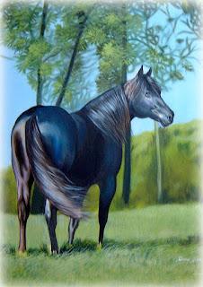 cavalo pintado em acrílico