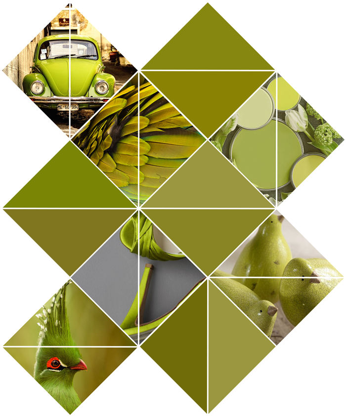 Photography, color inspiration, green, chartreuse, yellow, birds, shoes, feathers, vw beetle, paint