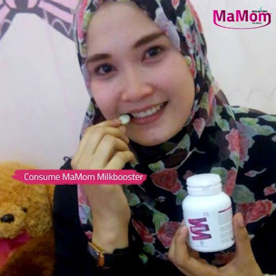 Image result for mamom milk booster review