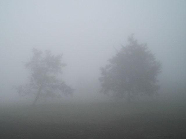 Megan Elizabeth: Gloomy Day