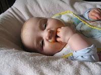 Baby leckt Brei von den Händen