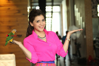 Actress Mannar Chopra in Pink Top and Blue Skirt at Rogue movie Interview  0223.JPG