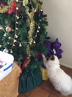 Princess, trying to climb Christmas tree