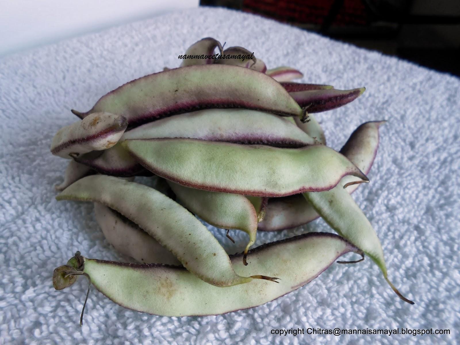 Avarakkai [ Broad Beans ]
