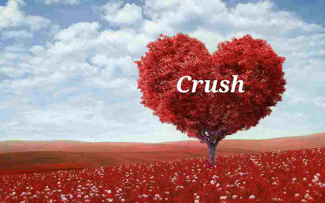 Crush-innocent-love