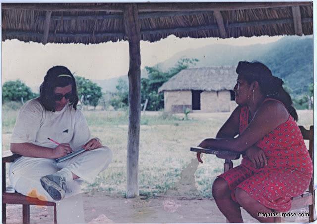 Roraima, Terra Indígena Raposa-Serra do Sol