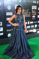 Shriya Saran in Beautiful Transparent Dark Gown IIFA Utsavam Awards 2017 020.JPG