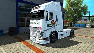 Holleman skin for Volvo 2013