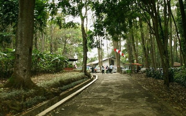 dago pakar Tempat Wisata Alam Di Bandung Dan Sekitarnya