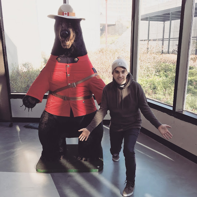 giant canadian bear