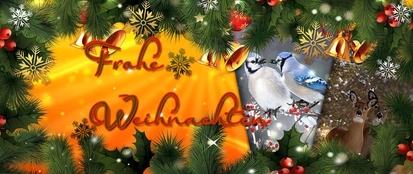 Weihnachtsbilder Italienisch.Weihnachtsbilder Downloaden Gratis Weihnachtsbilder