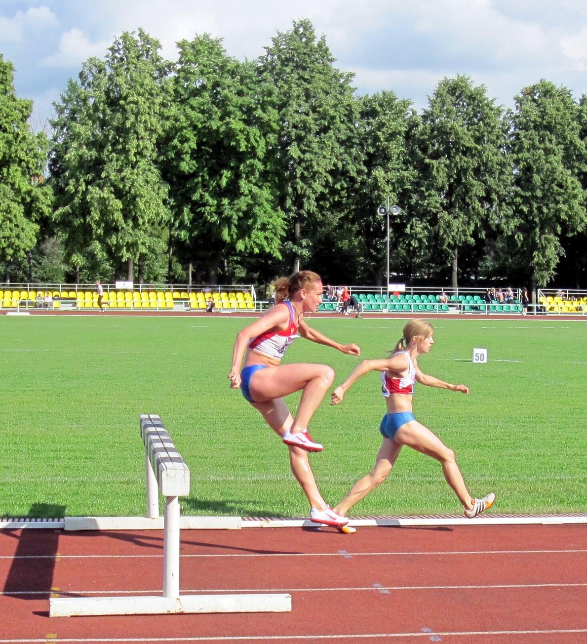 Stayers running hurdles